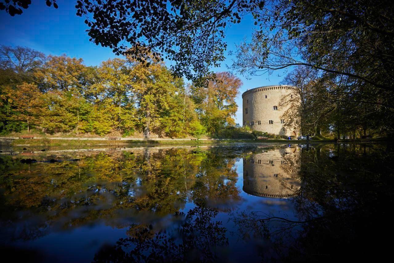 Ferienwohnung Burg im Zwinger Burgfee