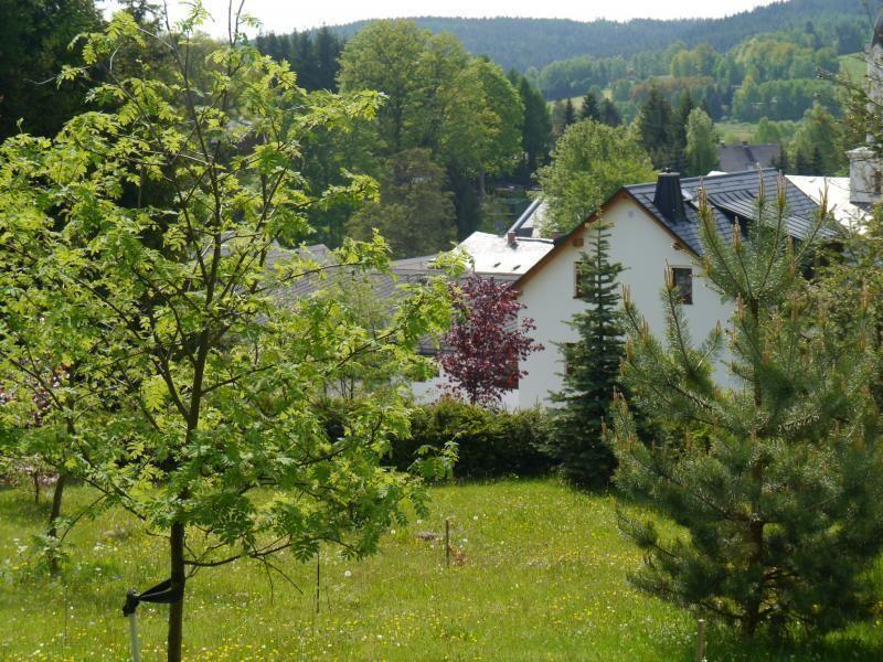 Fünf-Sterne Dachgeschosswohnung    Vogtland